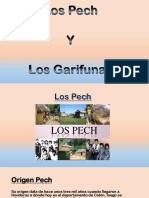 5 Grupo Garifunas y Pech Expo