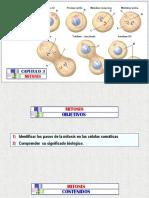 (3)a MITOSIS - Arteaga M. Modif..pptx