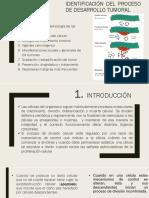 Identificación Del Proceso de Desarrollo Tumoral - Copia