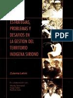 Bolivia Estrategias Problemas y Desafios