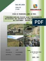 PERFIL-DEL-PROYECTO-PUENTE-SURO-FINAL-copia.pdf