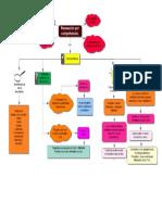 Mapa de Planeacion Por Competencias