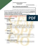LINEAMIENTOS_INFORME_2 (2)