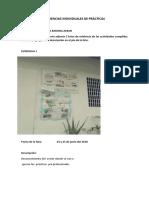 EVIDENCIAS INDIVIDUALES DE PRÁCTICAS CDI.docx