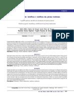 Medicina popular benefícios e malefícios das plantas medicinais.pdf