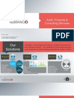 RedMango - Product Audit  Services portfolio.pdf