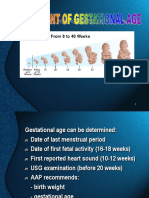 Assesment of Gestational Age_GDS-K3.3