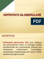 108_Nefropatii_glom.pdf