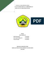 SATUAN_ACARA_PENYULUHAN_fix[1].docx