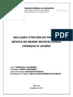 13_ribeiro.pdf