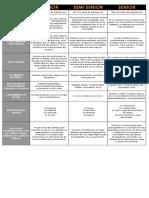 Diferencias Entre Junior-semi Senior- Senior
