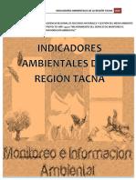 informe_indicadores.pdf
