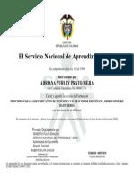 9218001708266CC1090471729C.pdf