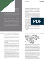 ESCENARIOS PEATONALES.pdf
