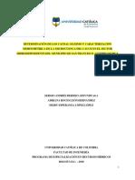 estimación de caudales maximos para la microcuenca del municipio de san francisco de sales cundinamarca