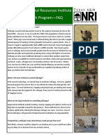 Wild Pig FAQs - Texas A&M Natural Resources institute