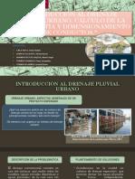 DIAPOS-EXPO-AVANCE-III-U.pptx