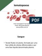 hemato1_01.pdf