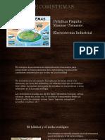 Pichihua Paquita Maximo