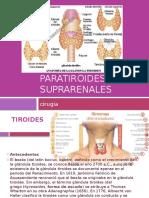 paratoriodes y suprarrenales
