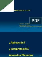 DETERMINACION DE LA PENA.pdf