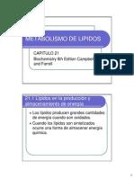 CAP 21 Metabolismo de Lipidos (2)