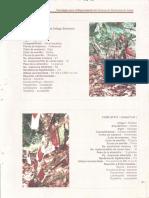 220.3.pdf