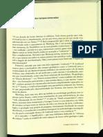 A imagem sobrevivente paginas 292 a 314