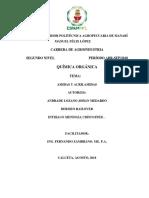 informe amidas acrilamidas