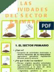 primarios