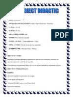 Proiect Didactic-casuta Pasarelelor1 (1)