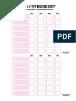 PIIT_1.0_Rep_Record_Bundle.pdf