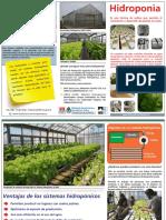inta_hidroponia.pdf