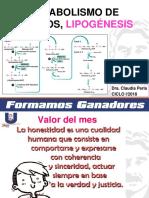 mi lipogenesis 2018 final.pdf