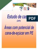 Estudo_de_Caso_Cana_02.pdf