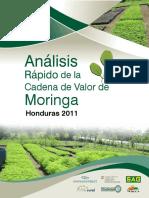 336138265-Analisis-Cadena-de-Valor-Moringa-Honduras.pdf