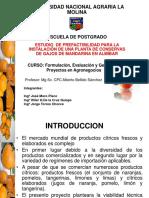 Expo Proyecto Mandarinas Hasta Organizacion
