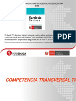 4.-Competencias Transversales_2018