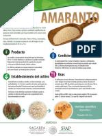 Amaranto Monograf A