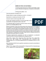 DATOS DEL FRIJOL.docx