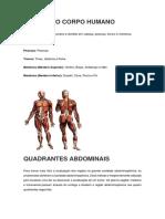 Divisão Do Corpo e Quadrantes Abdominais