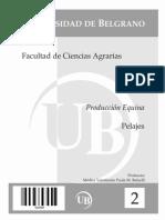 Producción Equina - Pelajes.pdf