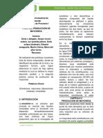 Preinforme_mayonesa.docx
