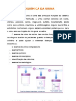 Bioquímica da Urina