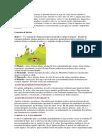 Geografia do brasil .docx