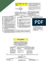 acto juridico esquema.pdf