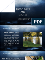 flood.ppt