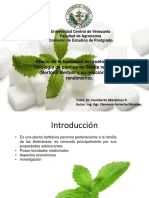 proyecto stevia.pptx