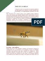LAS-FEROMONAS-DE-LA-ABEJA.pdf