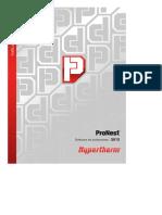 ProNest 2012 - Guía Rapida en Español